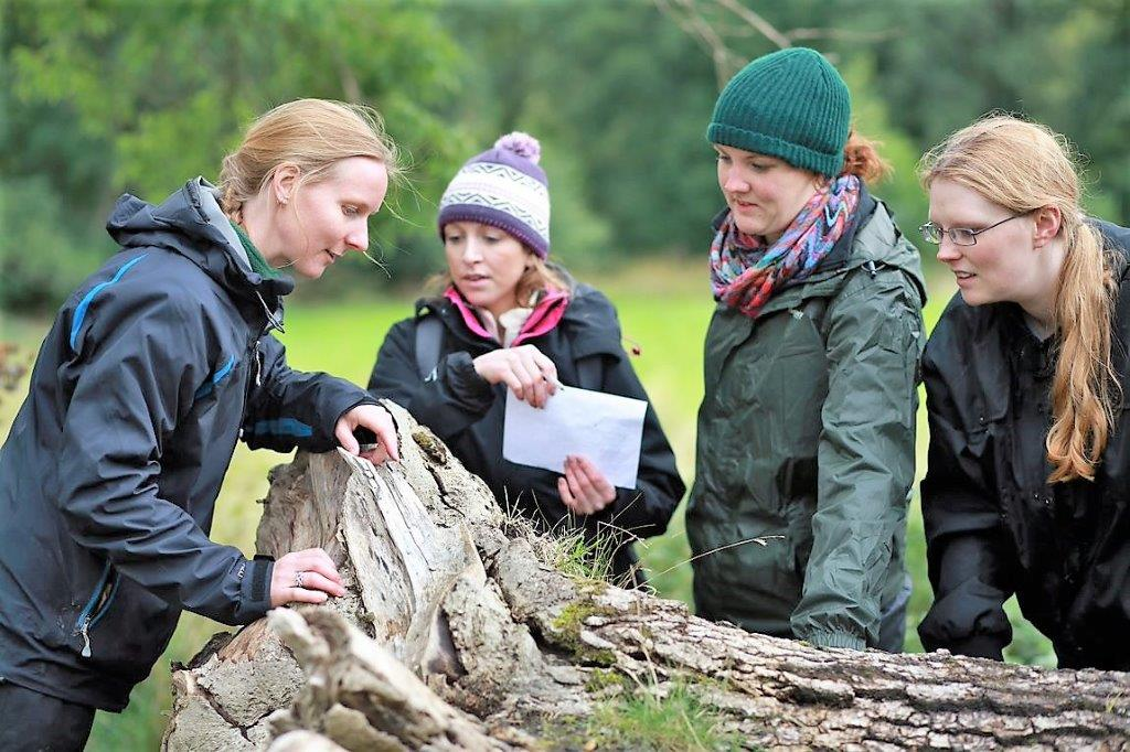 Student conservation volunteers - University of Cumbria