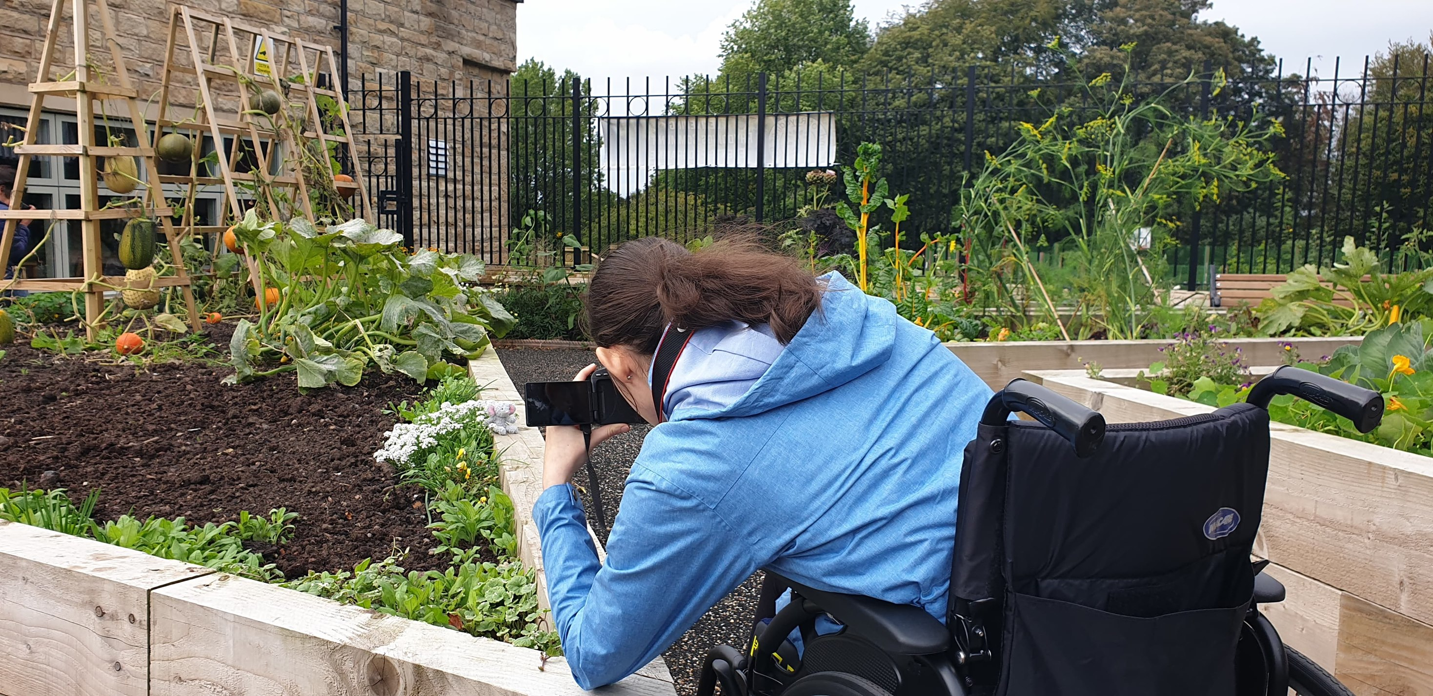 Wheelchair user takes photo in garden