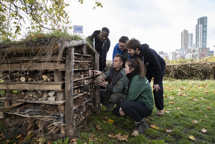 Chris Packham, Jamal Edwards and others look inside bug hotel
